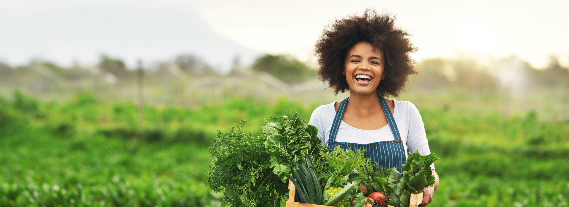 Woman holding fresh produce as example of Catholic Charities cause marketing