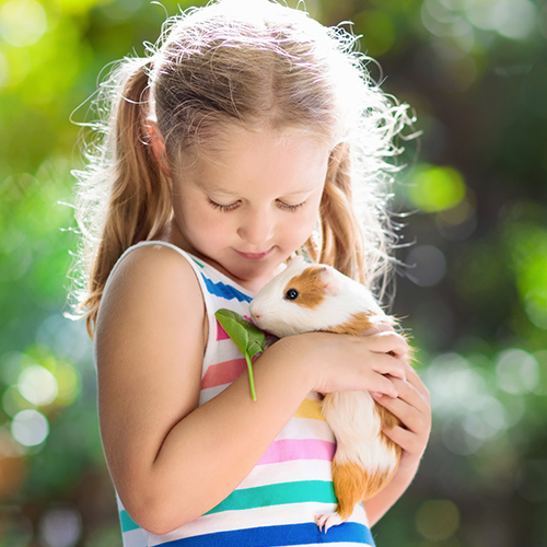 Closeup of girl with pet